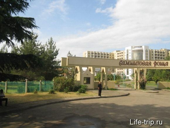 Абхазия. Пансионат Самшитовая роща.