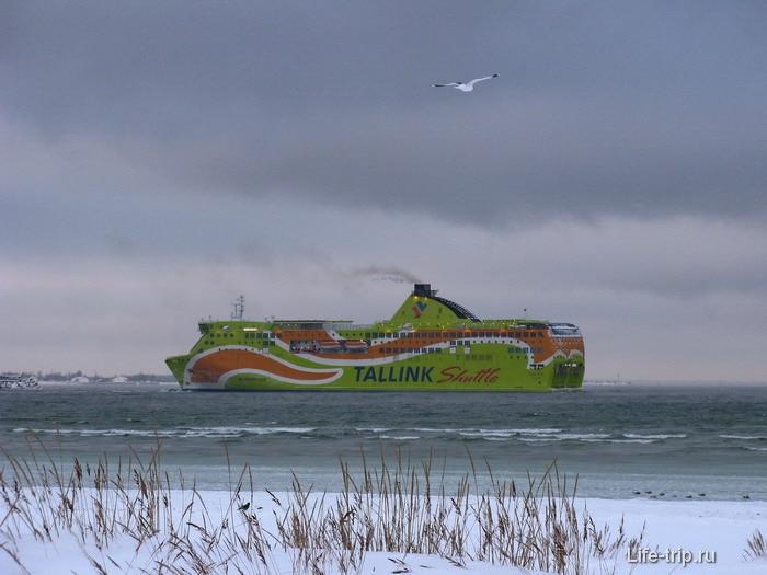 Таллинн. Недалеко от порта.