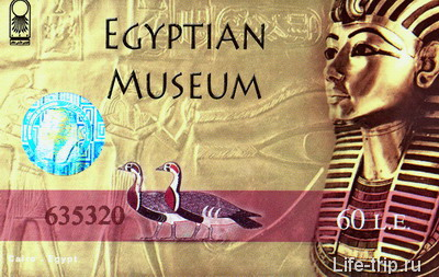 Билет в Каирский Египетский Музей.