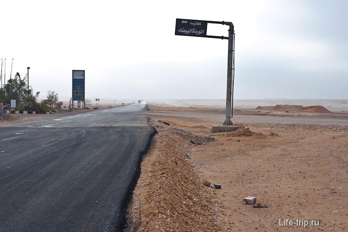 Египет. Пустыня.