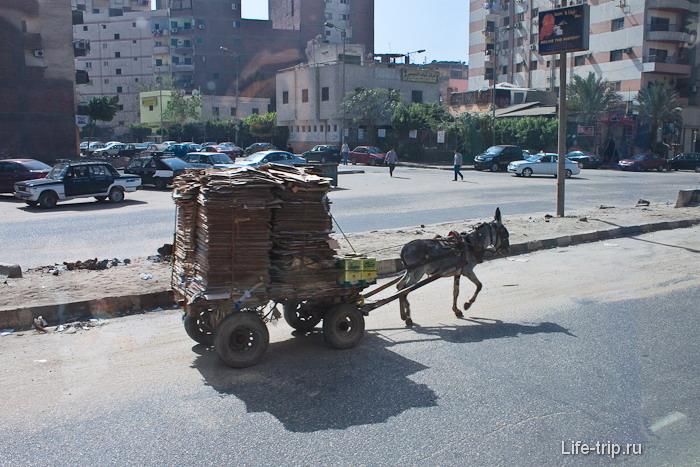 Египет. Каир. Одно из средств передвижения.