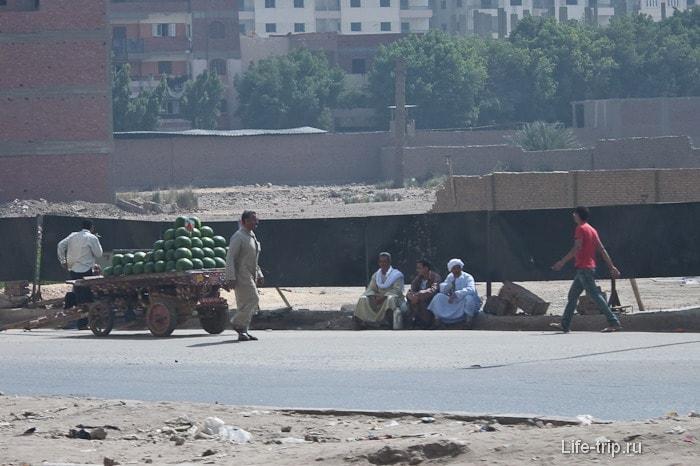 Египет. Каир. Продавцы арбузов.