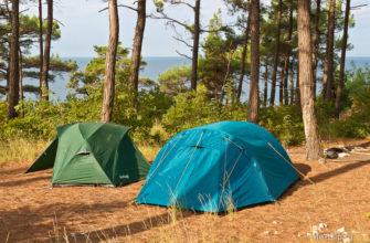 Палатки в пицундских соснах