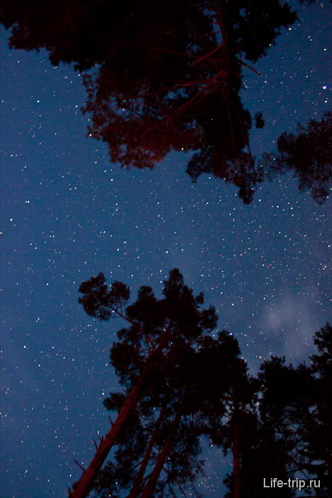 Звездное небо в августе.