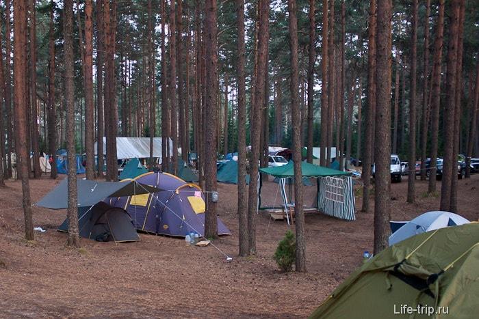 Серф лагерь Волго.