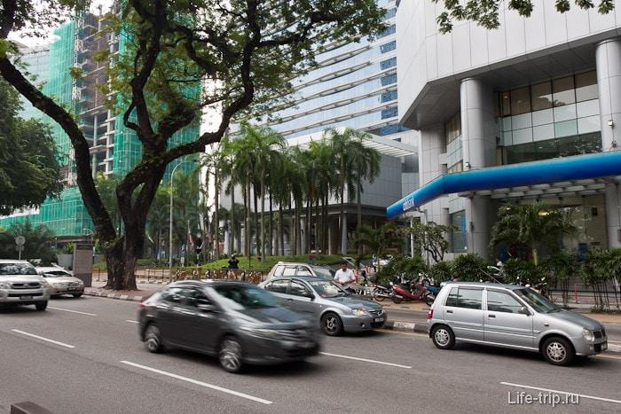 Пальмы и другая дикая растительность на улицах