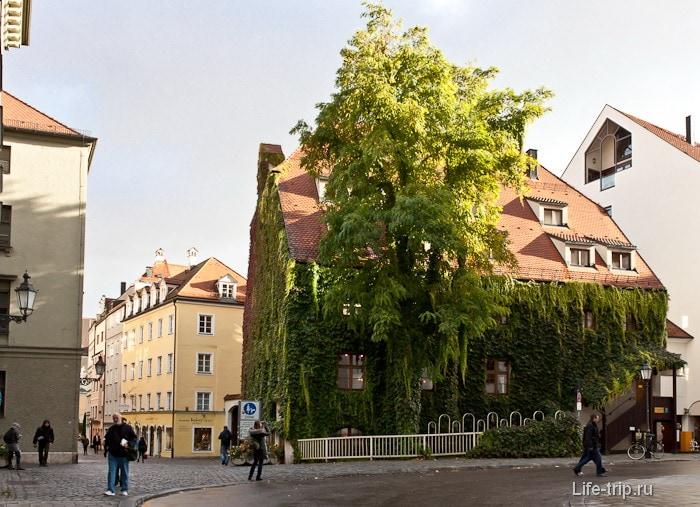 Зеленый оазис в центре Мюнхена