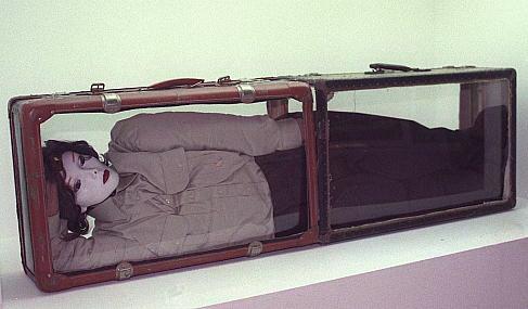 Спаренные чемоданы с прорезью