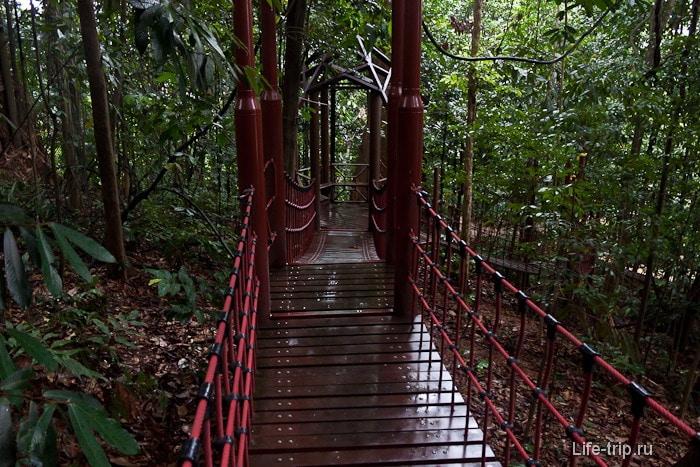 Парк Bukit Nanas