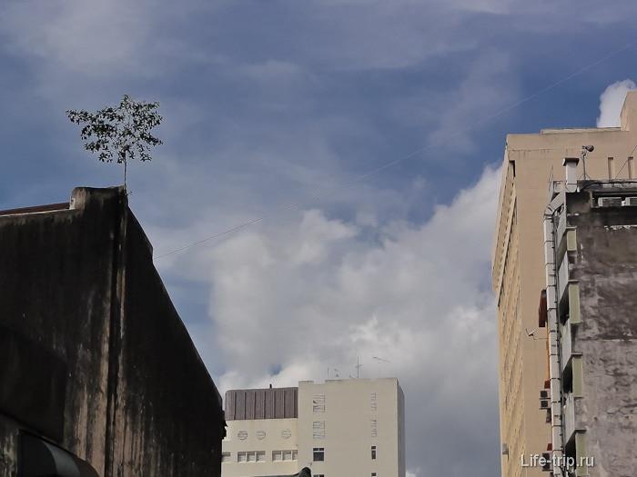 Город Куала-Лумпур