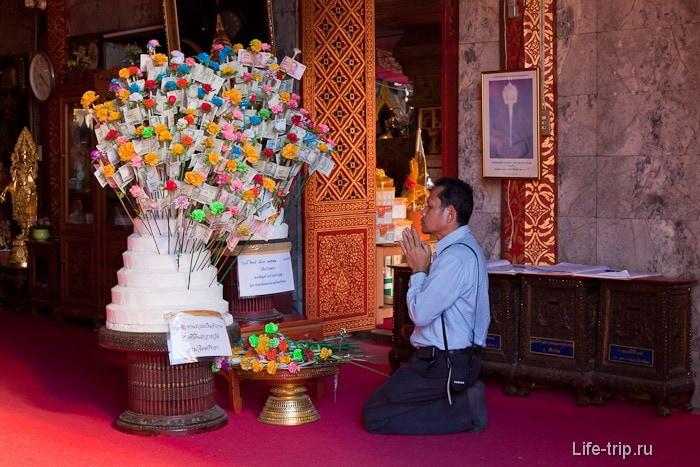 Молитвы денежному дереву