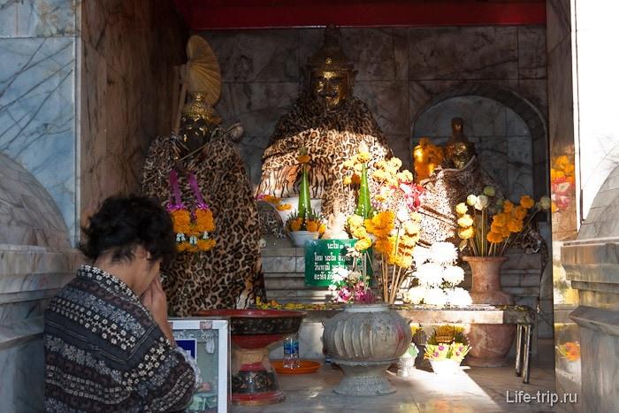 Будды в леопардовых халатах