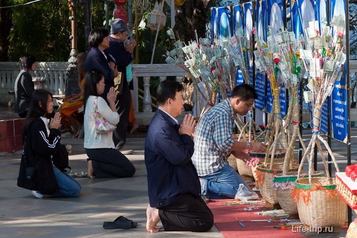 Молитвы денежным деревьям