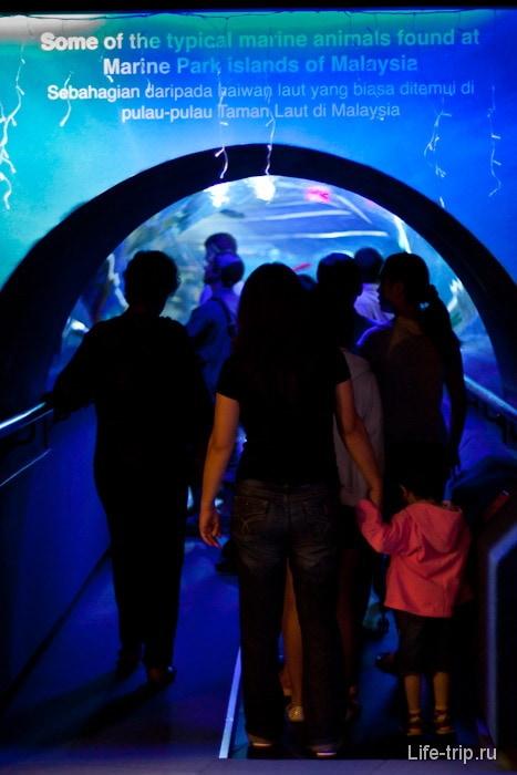 Вход в 90-метровый туннель