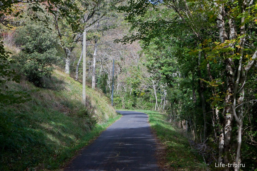Узкая дорога в горах - асфальт отменный