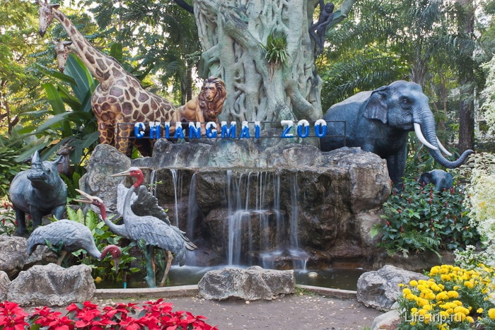 Вход в зоопарк Chiangmai Zoo