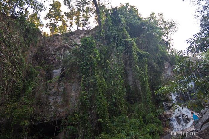 Растительность в национальном парке Doi Suthep