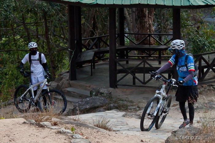 Вело-ниндзя тоже любят природу
