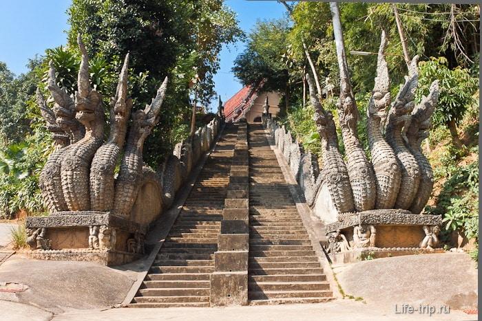 Лестница к вьюпоинту и буддийским храмам