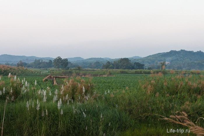 В окрестностях Chiang Saen