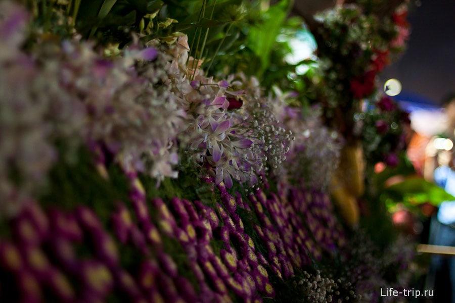 Фестиваль цветов в Чиангмай