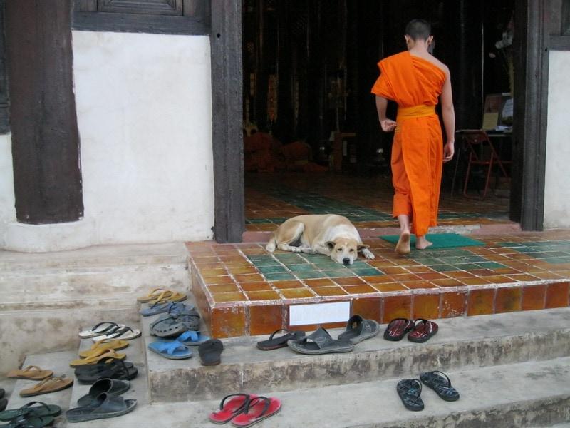 Шлепки перед входом в храм