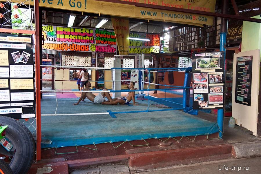 Секция тайского бокса