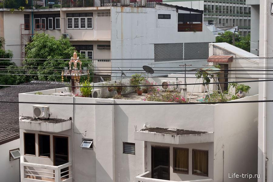 Свой садик на крыше