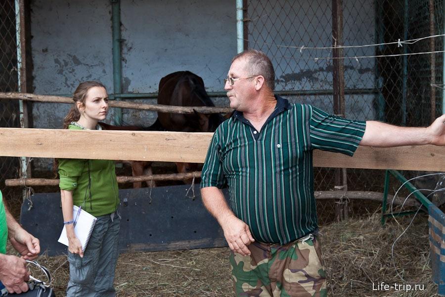 Нам рассказывают, что лошадей продают в Ростов ((