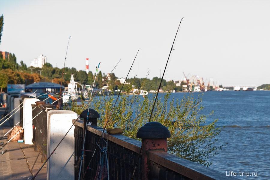 В Ростове рыбачат даже женщины