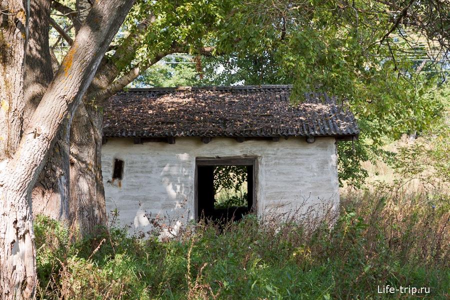 Домик в тени дерева неподалеку