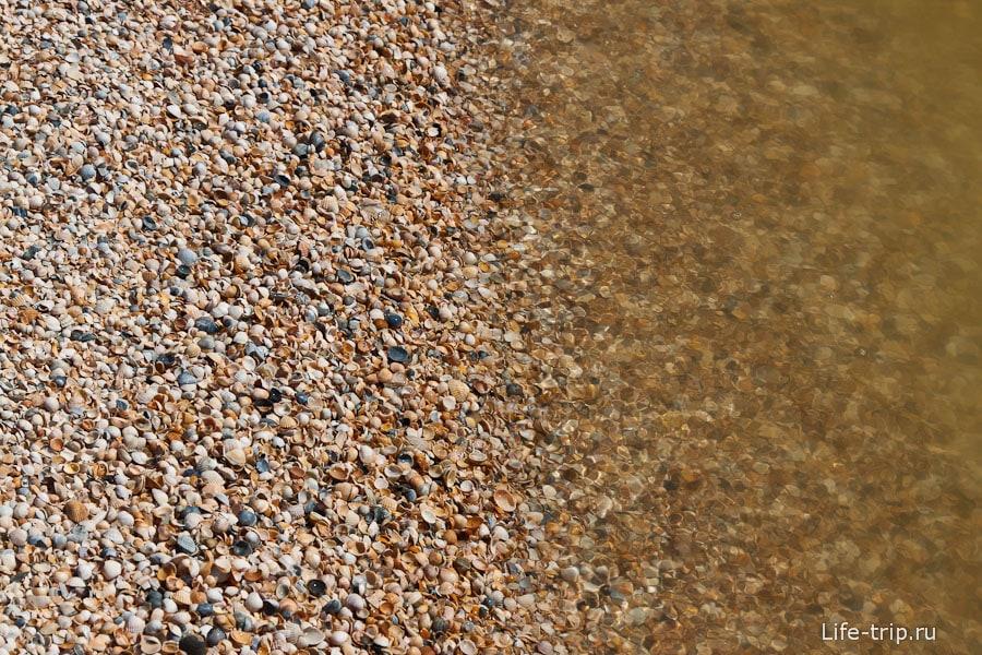 Коса Долгая - ракушечный берег
