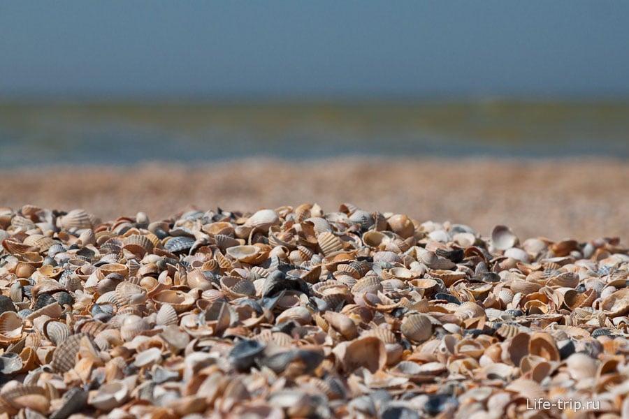 Пляж из мелкой ракушки