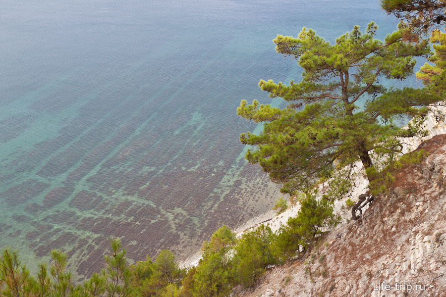 Раздетые на общественном пляже 5 фотография