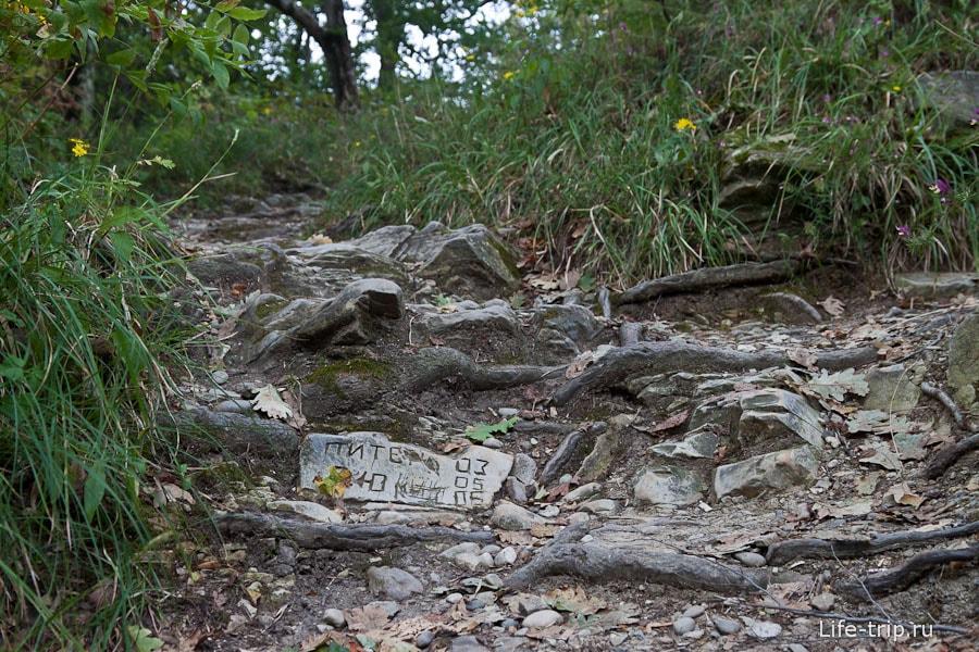 Тропинка и вырезанная в камне надпись