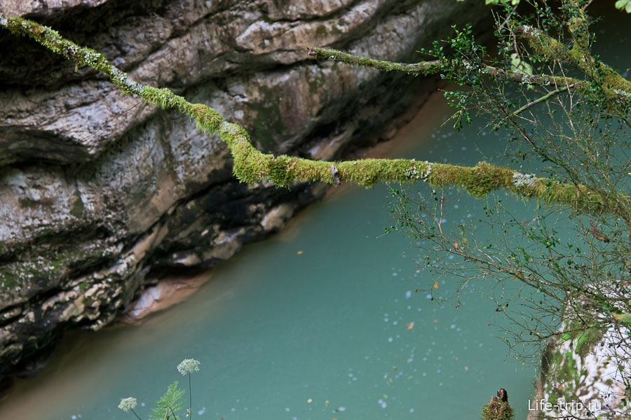 Фото Гуамского ущелья