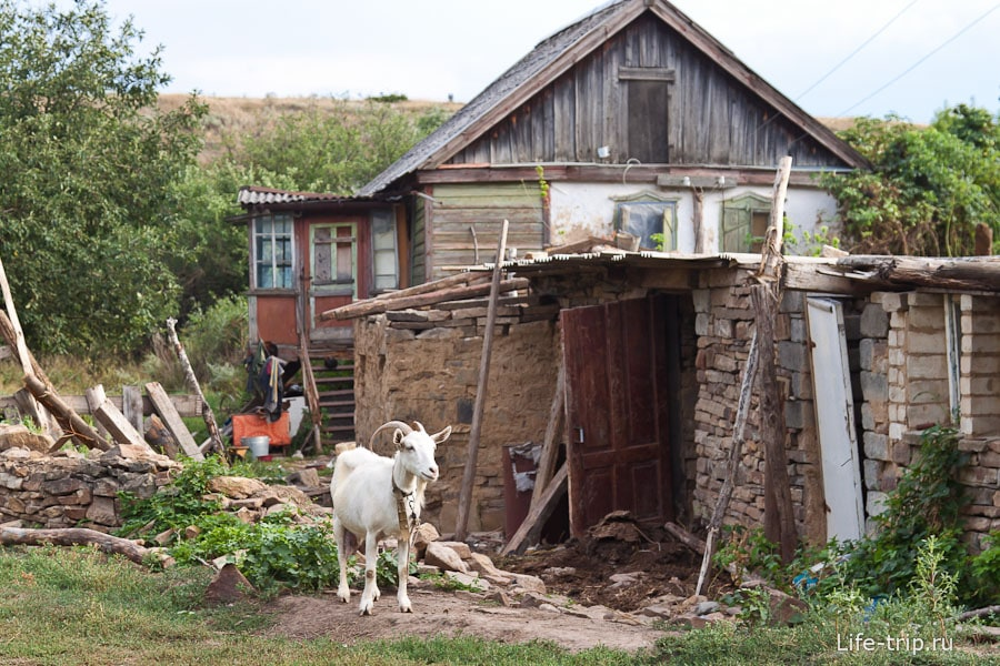 Еще пока жилой дом в хуторе Дядин