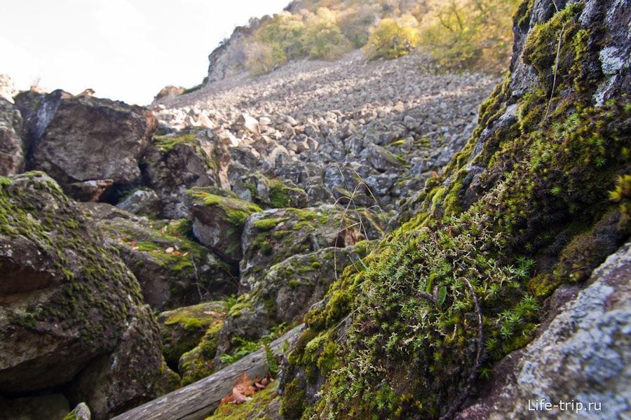Около каменного моря