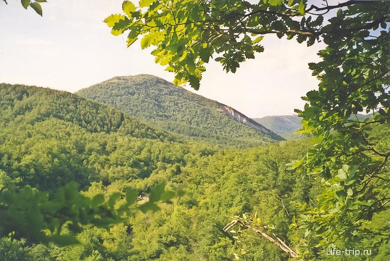 Вид из нашей палатки