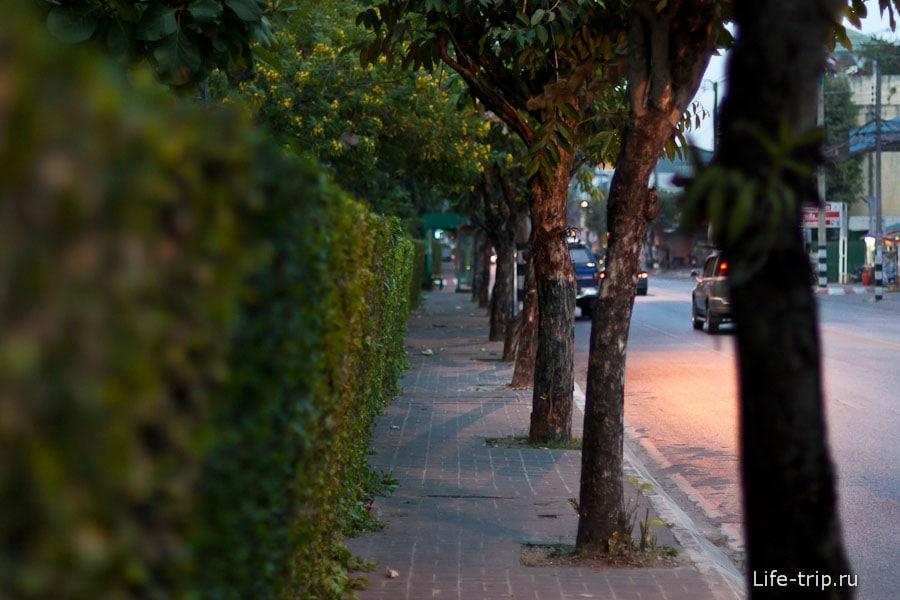 Один из немногих тротуаров в Чианг Май