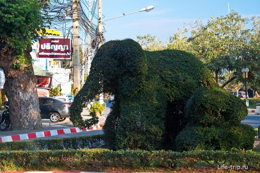 Растительный слон