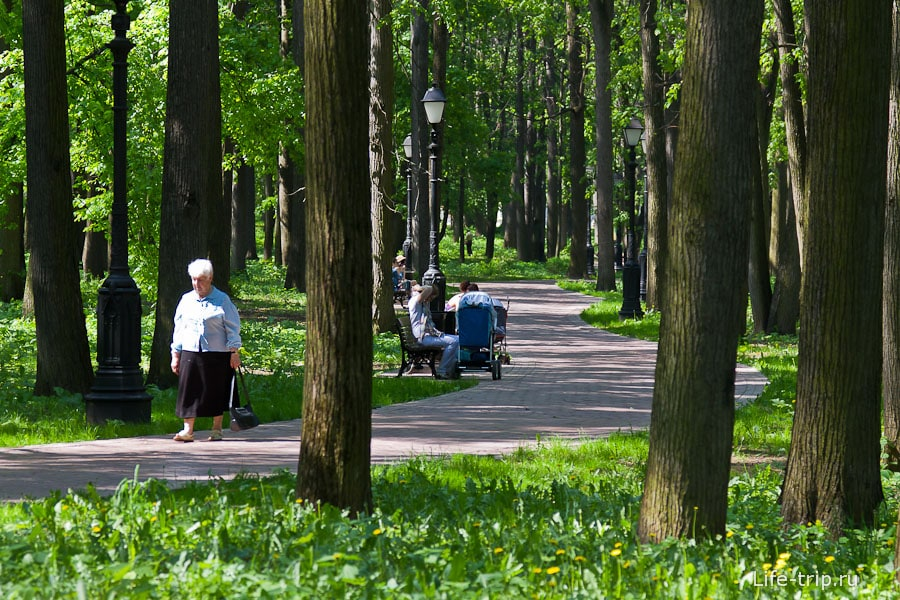 Царицынский парк