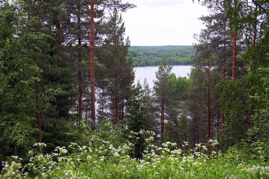 Красоты Кенозерья, Архангельская область
