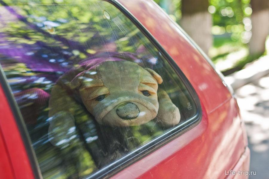 Очень грустная плюшевая собака у кого-то в машине