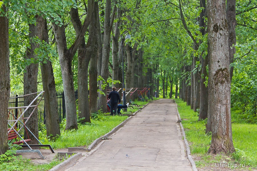 Аллеи усадьбы Суханово