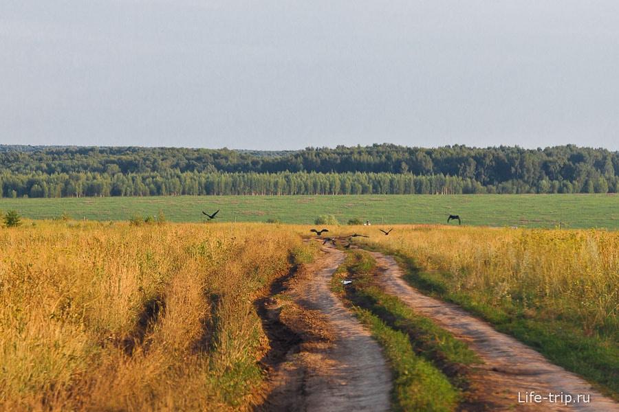 После асфальта нужно ехать 5 км по грунтовой дороге