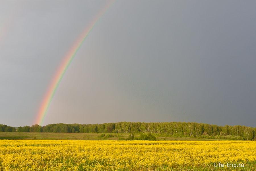 Буйство красок после дождя
