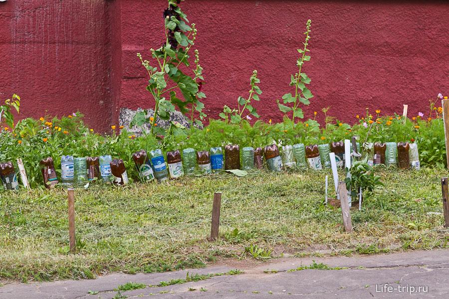 Клумба с заборчиком из пластиковых бутылок