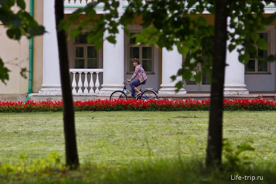 Многие катаются на велосипедах