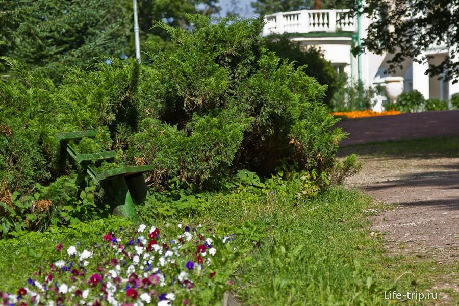 Шикарная лавочка, с одной стороны казацкий можжевельник, с другой - клумба цветочная